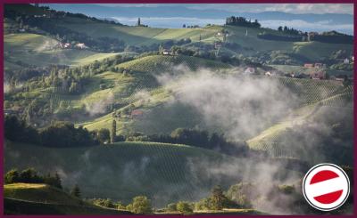 Austria! Wine country par excellence